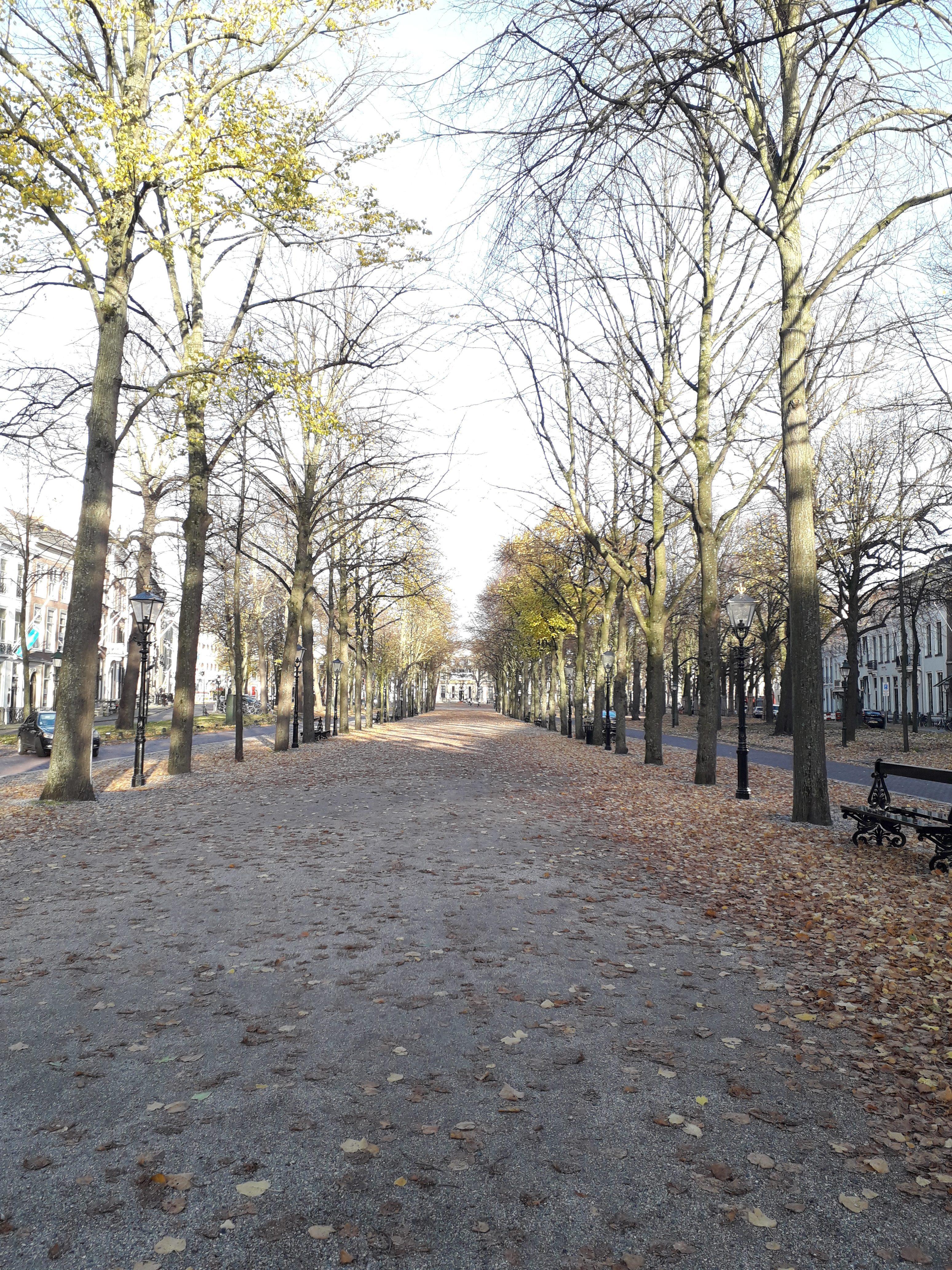 Leuke hotspots in Den Haag