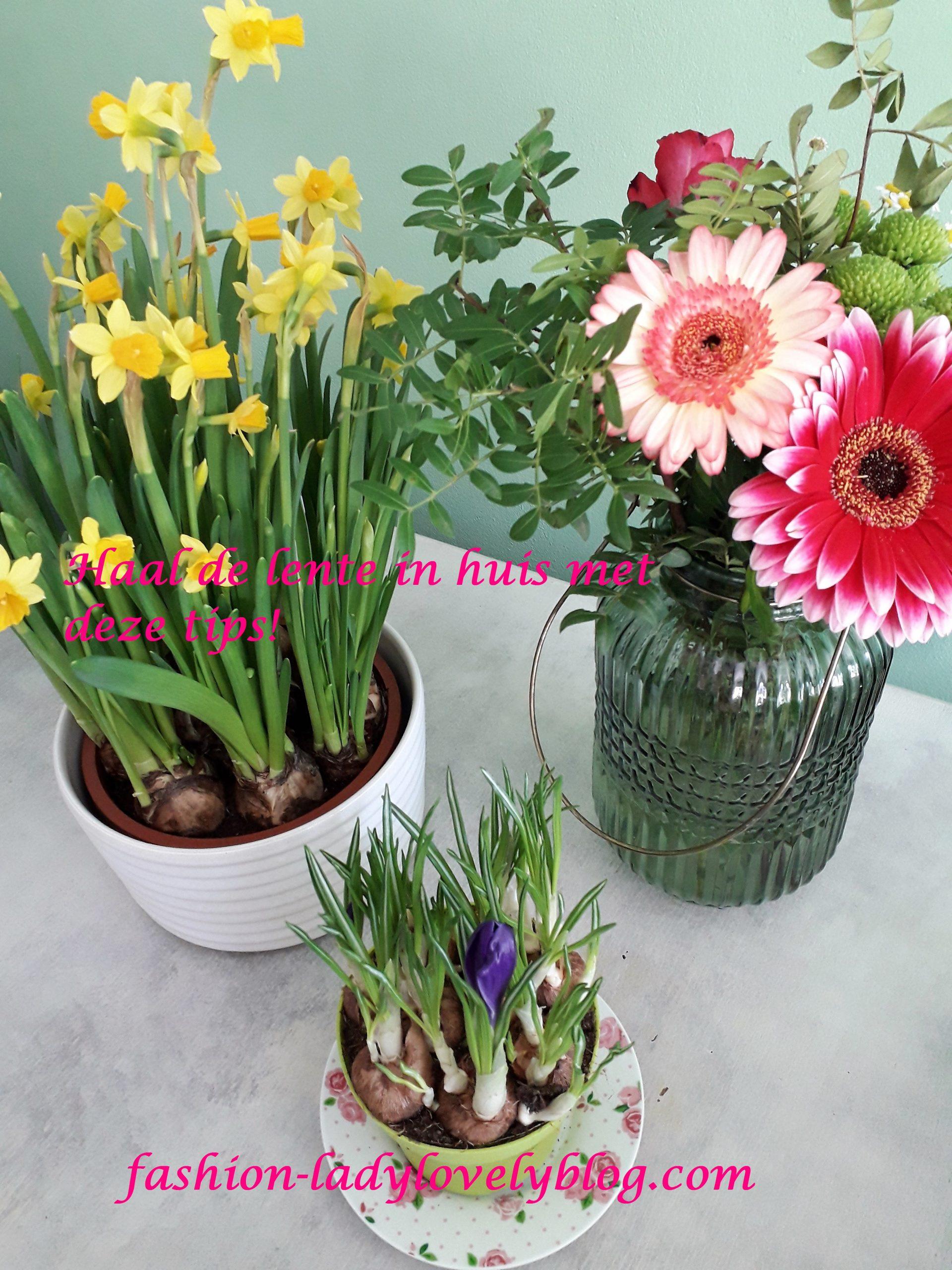 Haal de lente in huis met deze tips