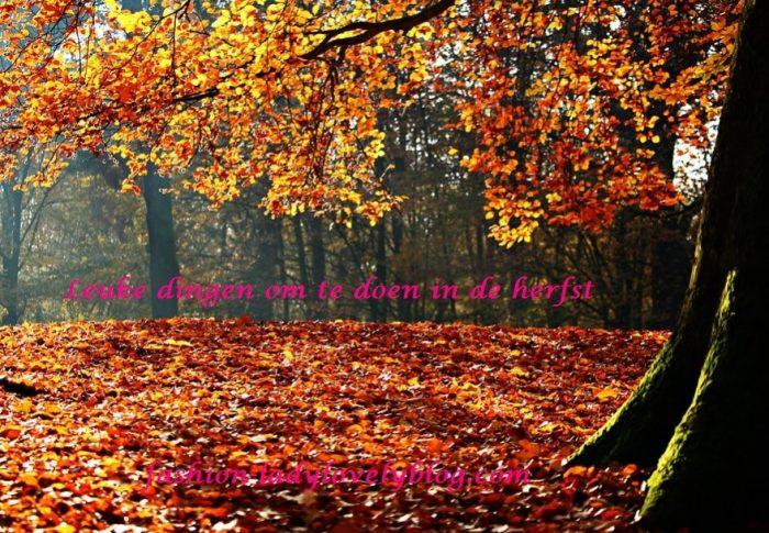 50 leuke dingen om te doen in de herfst