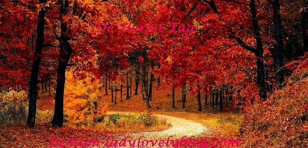 De herfst tag
